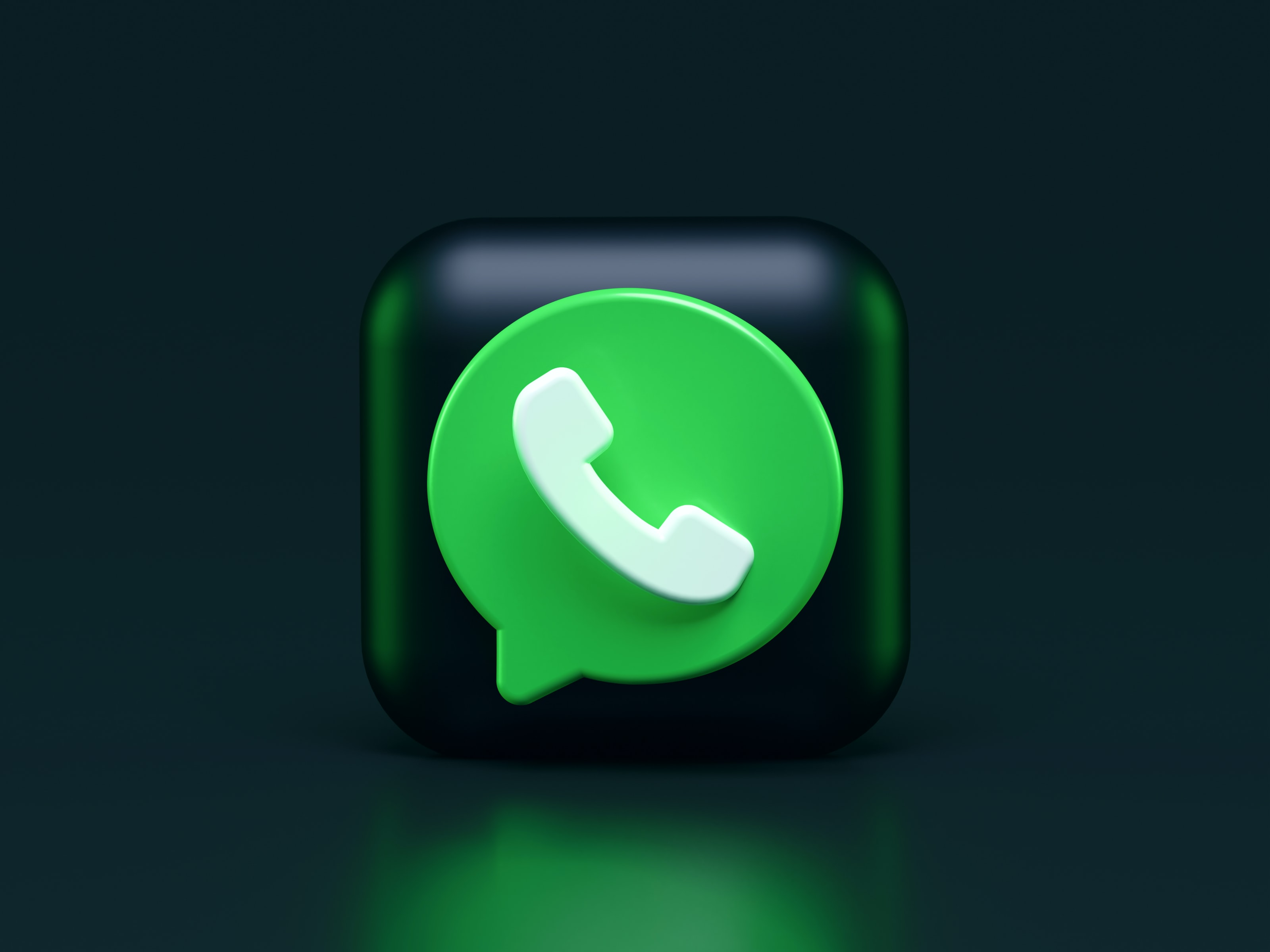 WhatsApp Business integration