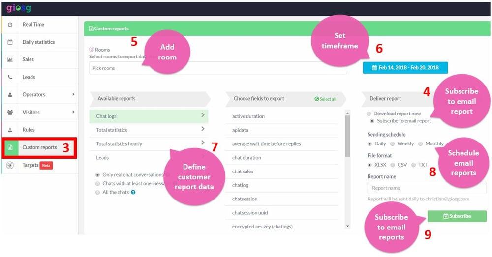 Schedule Custom Reports.jpg