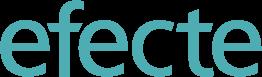 Efecte Oy logo